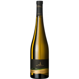 Sauvignon Passion DOC 2011 0,75 ℓ